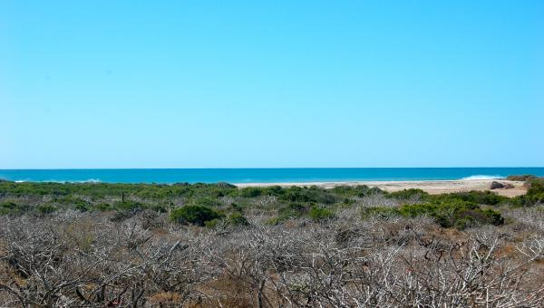 Close To The Beach & Lots of Land – Parcel #162
