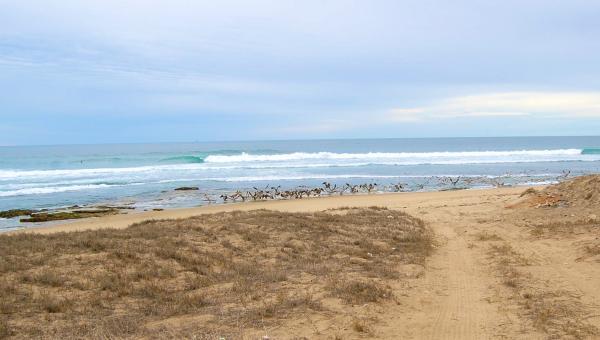 Sturdy Roads Run Through Your Property To Beach
