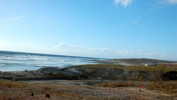 4 Acres Of Tranquil Beachfront Property = $60K